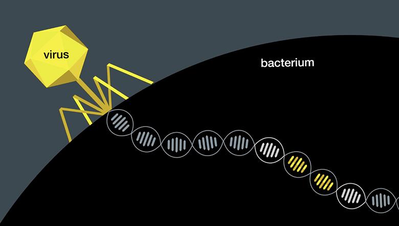 National Geographic - DNA Revolution